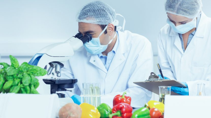 What Your Farm or Food Business Needs to Know About the Food Safety Modernization Act