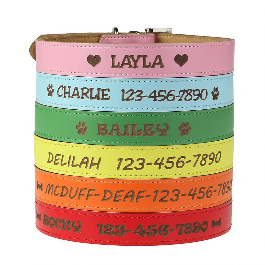 20 Best Business Gifts for Under 25 Dollars - Personalized Dog Collar