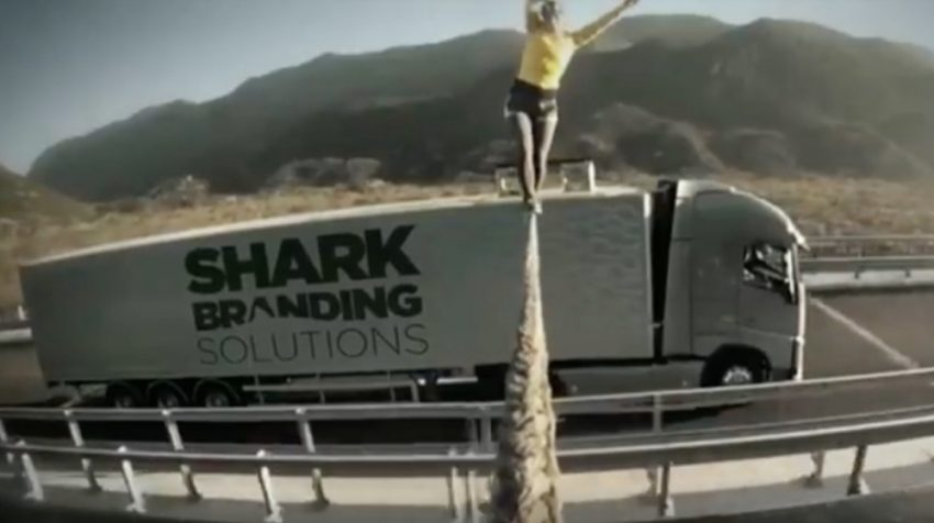 Spotlight: SharkBranding Marketing and Branding Company Makes Small Business Clients Famous