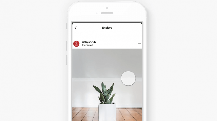 Instagram Explore Feed Ads - What Your Small Business Should Know