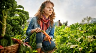 What is Urban Farming and is it Profitable?