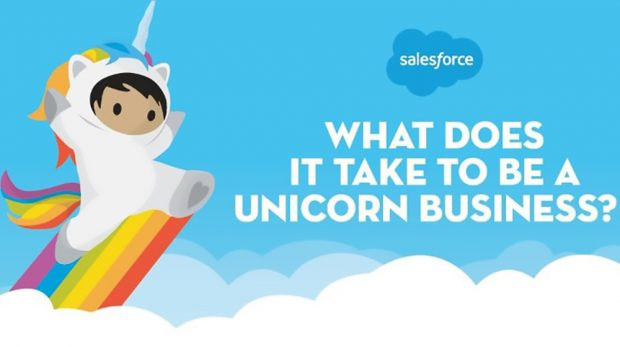 Anatomy of a Unicorn Business and How to Become One