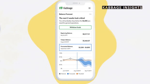 Kabbage Insights