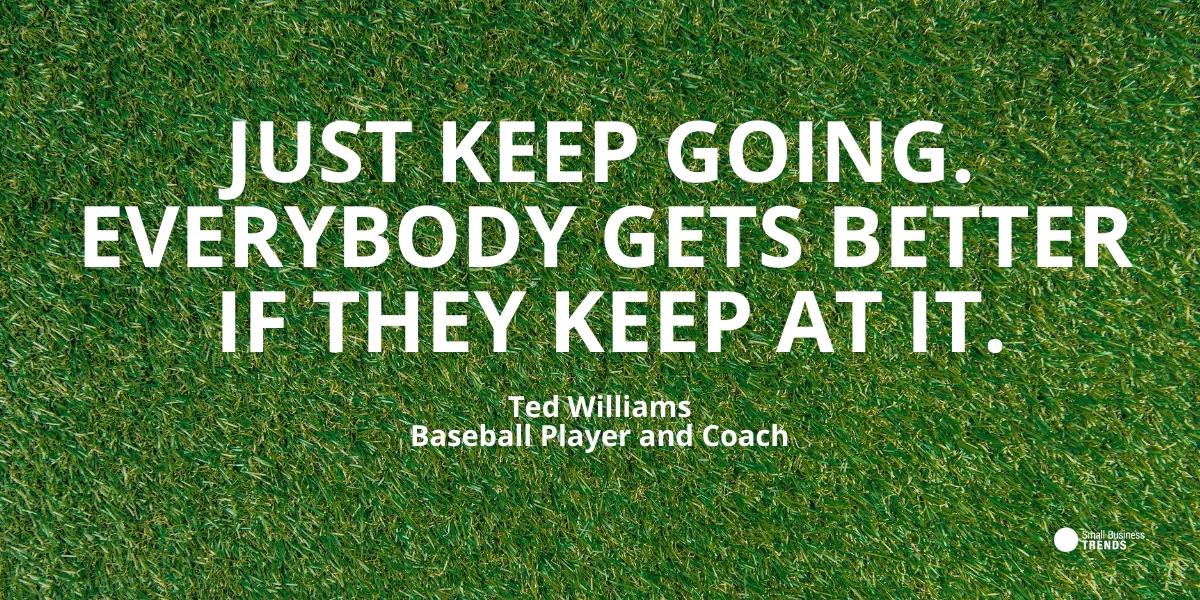 ted williams baseball