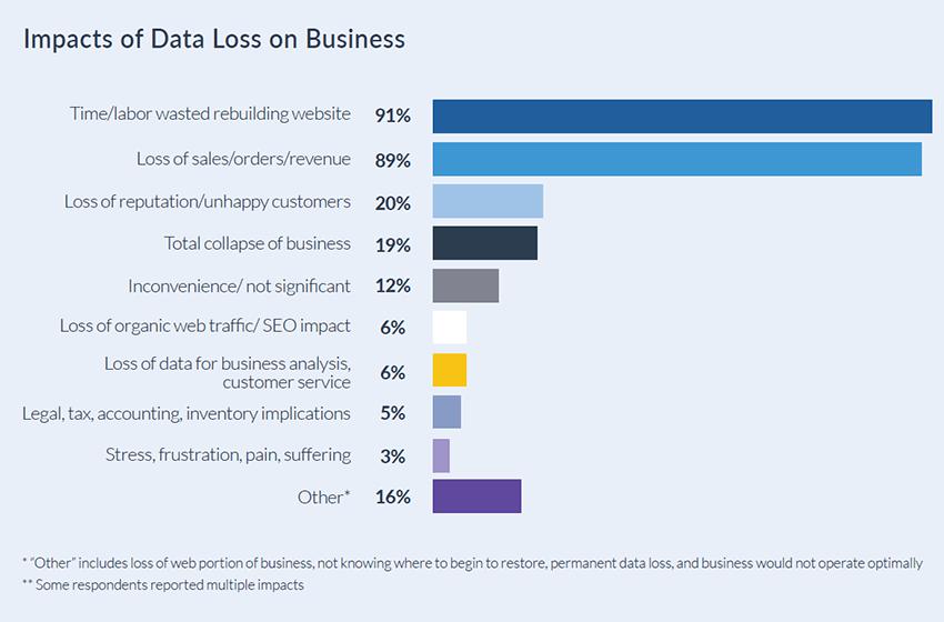 Rewind 2020 Data Protection Survey