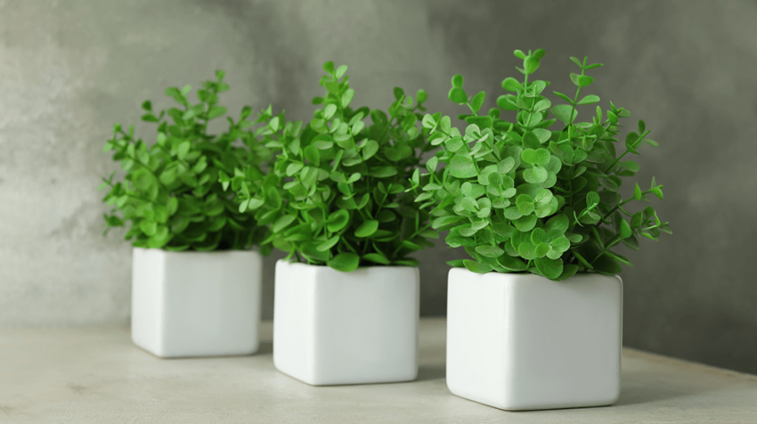 30 Best Fake Plants for Your Office