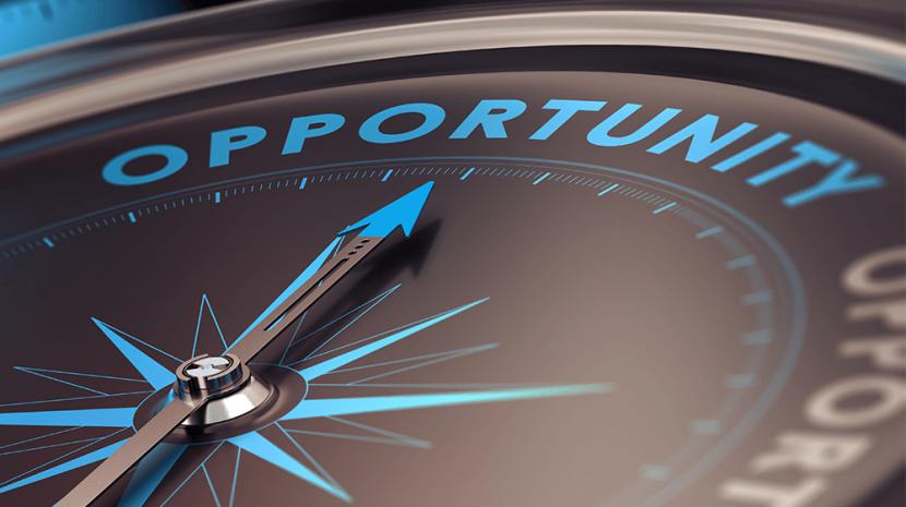 Franchise vs Business Opportunity