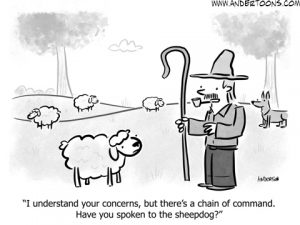 chain of command business cartoon