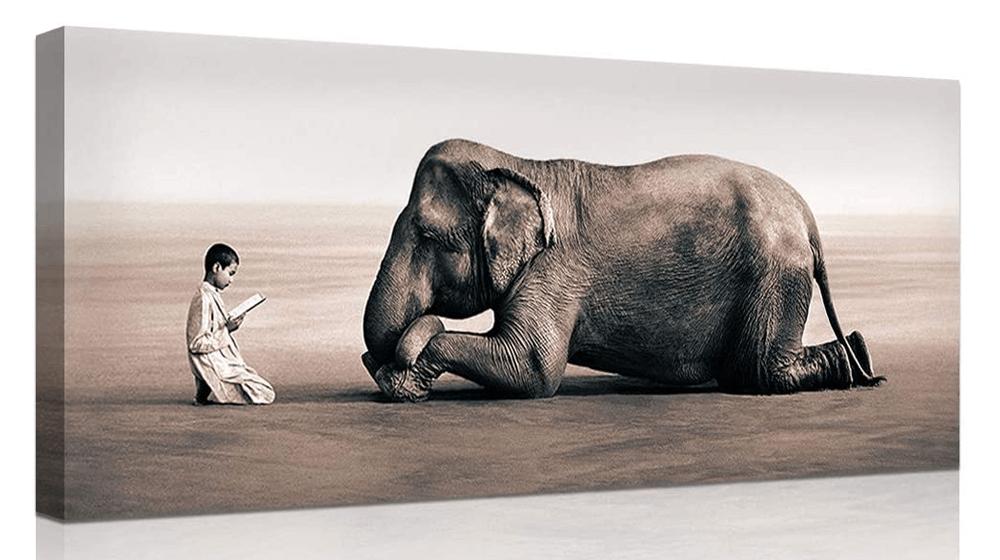 DekHome Grey and White Animals Canvas