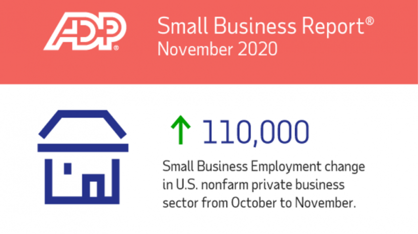 adp small business report november 2020
