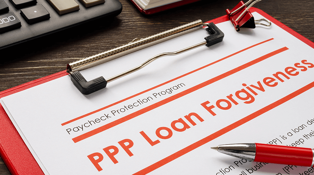 ppp loan forgiveness portal