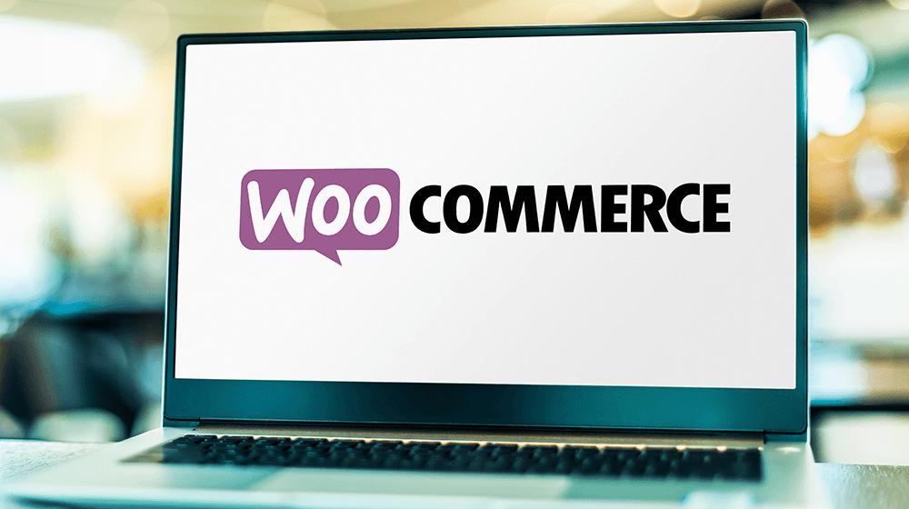 What's WooCommerce? – Small Enterprise Developments